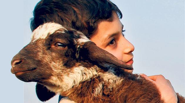 Kurban ibadeti çocuklara nasıl anlatılmalı?